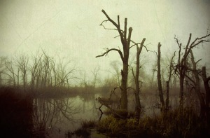 creepy_swamp